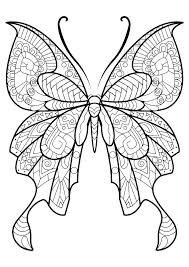Butterfly Coloring Page Kindergarten 4 Fantastic Free Butterfly