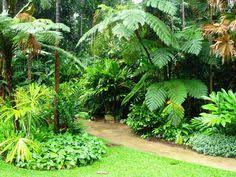 Small Picture Simple Home Tropical Garden Design Layout Ideas for the House