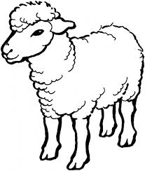 Small Picture Sheep Cartoon Coloring Pages Coloring Coloring Pages