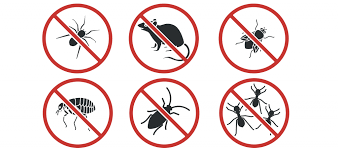 Image result for Pest Manage