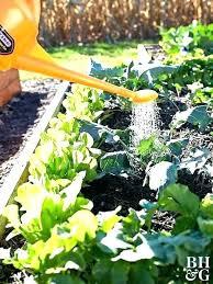 raised bed gardening soil mixture box gardening soil mix raised veggie
