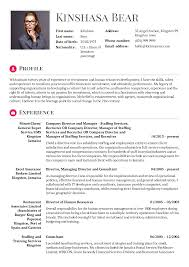 Human Resources Officer Consultant Resume Sample Resume Sample