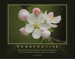 Quotes About Perspective Simple Perspective Quotes Sentences Typography Pixoto