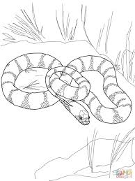 Small Picture Plains Garter Snake coloring page Free Printable Coloring Pages