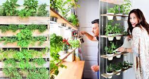 diy herb garden ideas for indoor outdoor
