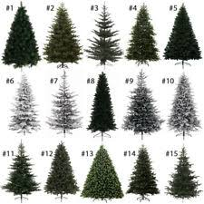 Top 10 Most Popular Christmas Trees At Affordable PricesKingswood Fir Pencil Christmas Tree