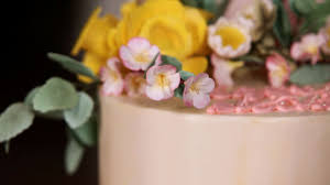 Sugar Paste Cake Decorating How To Make A Sugar Paste Cherry Blossom Howcast The Best How