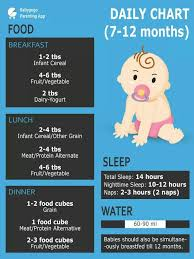 Provide Me Diet Chart For 6 Month Old Baby Boy