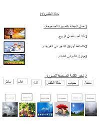 حالة الطقس interactive worksheet