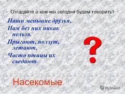 Презентация на тему Курсовая работа Сергиенко И А школа  3 Отгадайте