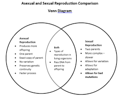Venn Diagram Of Asexual And Sexual Reproduction Growth And Development Mrs Bitners Classes