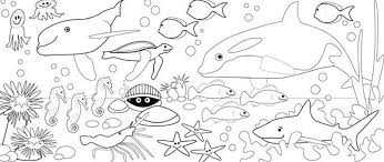 Small Picture Sea Coloring Pages Under The Sea Creatures Coloring Pages And Free