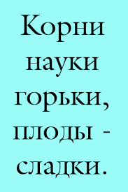 Заказать отчет по практике Нижний Новгород отчет по  Заказать отчет по практике Нижний Новгород