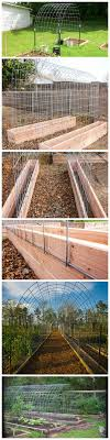 Small Picture Best 10 Diy trellis ideas on Pinterest Trellis ideas Plant