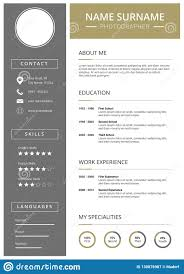 Modern Curriculum Vitae Template With Icons Stock Vector