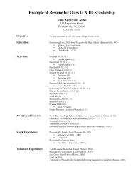 Grocery Retail Sample Resume Grocery Retail Resumeample Endearing Store Clerk Sample With 1