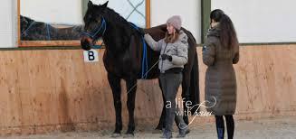 Horsemanship: Was Lisa Röckener und Ian Benson eint - A life with horsesA  life with horses