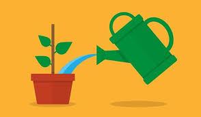 Lead Nurturing 5 Lead Nurturing Best Practices And Worst Practices