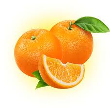 florida oranges other sweet citrus fruit gifts