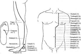 Acupuncture Com Acupuncture Points Kidney Meridian Channel