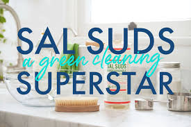 Sal Suds Dilution Chart Why Sal Suds Is A Natural Cleaning Champion Green Cleaning