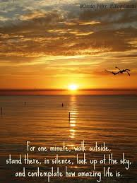 Quotes About Sunrise Simple Saturday Morning Sunrise From Islamorada Florida Keys Photos
