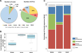 Mosquito Classification Chart Factors Shaping The Gut Bacterial Community Assembly In Two