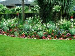 garden border flowers in full sun how
