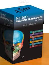 Netters Flashcards