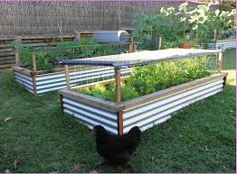 Small Picture Building Raised Garden Beds Nz Best Garden Reference