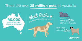 Most Popular Pets Australias Favourite Pets Mad Paws Blog