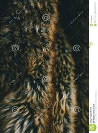 Texture Hair Design Brown Natural Fur Texture And Background Natural Animal