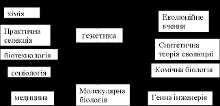 Генетика ua textreferat com Короткий історичний нарис розвитку генетики