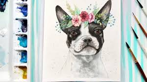 boston terrier watercolor sd painting