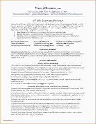 Query Letter Format Outstanding Business Query Letter Sample Letsbetourists
