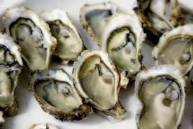 Oyster Identification Chart Oyster Guide New England Oysters New England Today