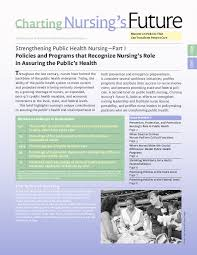 Charting Programs For Nursing Strengthening Public Health Nursing Part I Policies And