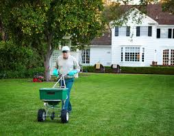 trugreen professional lawn services mc