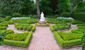 marvel at the beauty of the historical bayou bend collection gardens