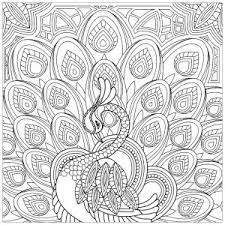 coloring pages peacocks coloring pages for adults