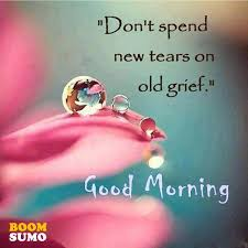 Lovely Good Morning Quotes With Images Best Of Lovely Good Morning Quotes About Life Don't Spend New Tears For Old
