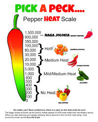 77 Explicit Chili Heat Scale