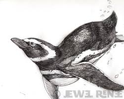 penguin drawings in pencil. Exellent Pencil Penguin Pencil Drawing Intended Drawings In