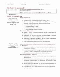 Curriculum Vitae Que Es Letter Sample Collection