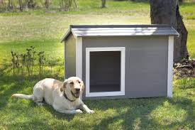 thermocore ii super insulated dog house