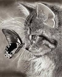realistic animals to draw. Interesting Realistic Cat And Butterfly Throughout Realistic Animals To Draw N