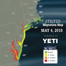 Striper Migration Map May 4 2018 On The Water