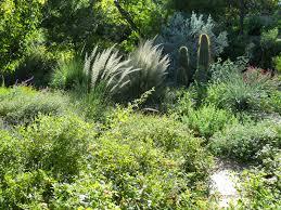 Small Picture Garden Design Austin Garden ideas and garden design