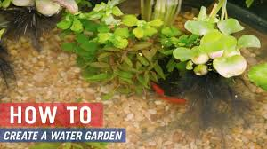 how to build a water garden with tarter galvanized steel stock tanks