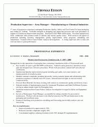Download Stay At Home Mom Resume Examples